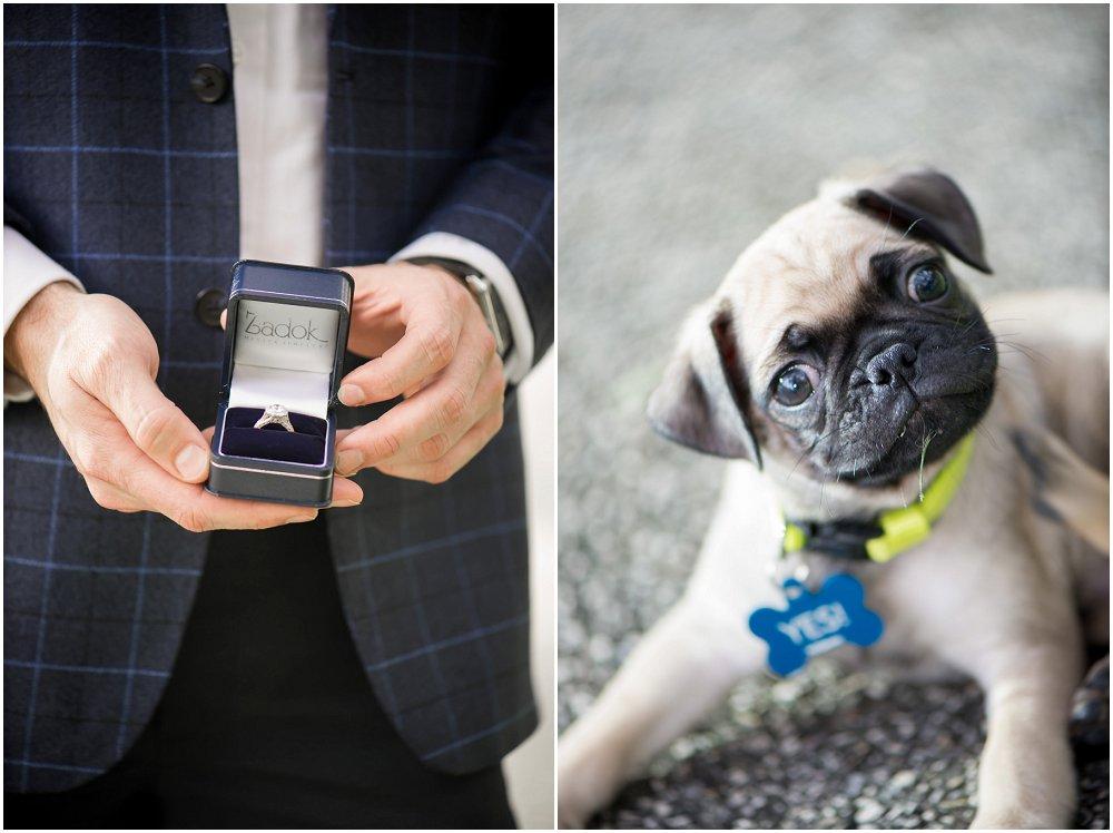 frieri med hund01